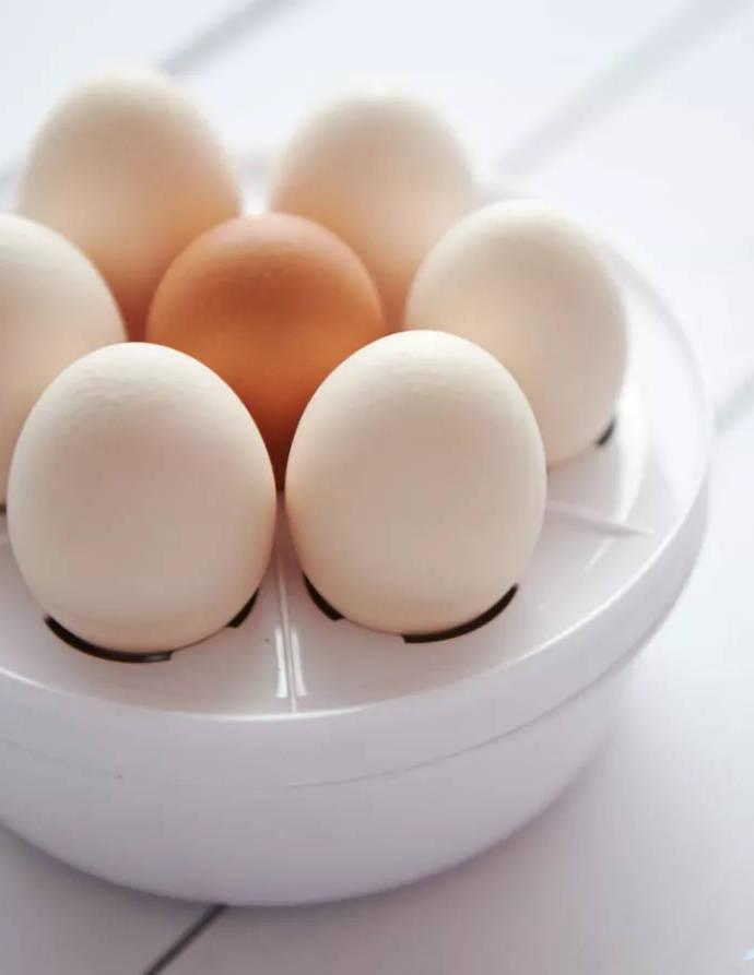 Яйцеварка — стоит ли покупать?
